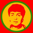 Website-Icon für Kampagne Halim Dener